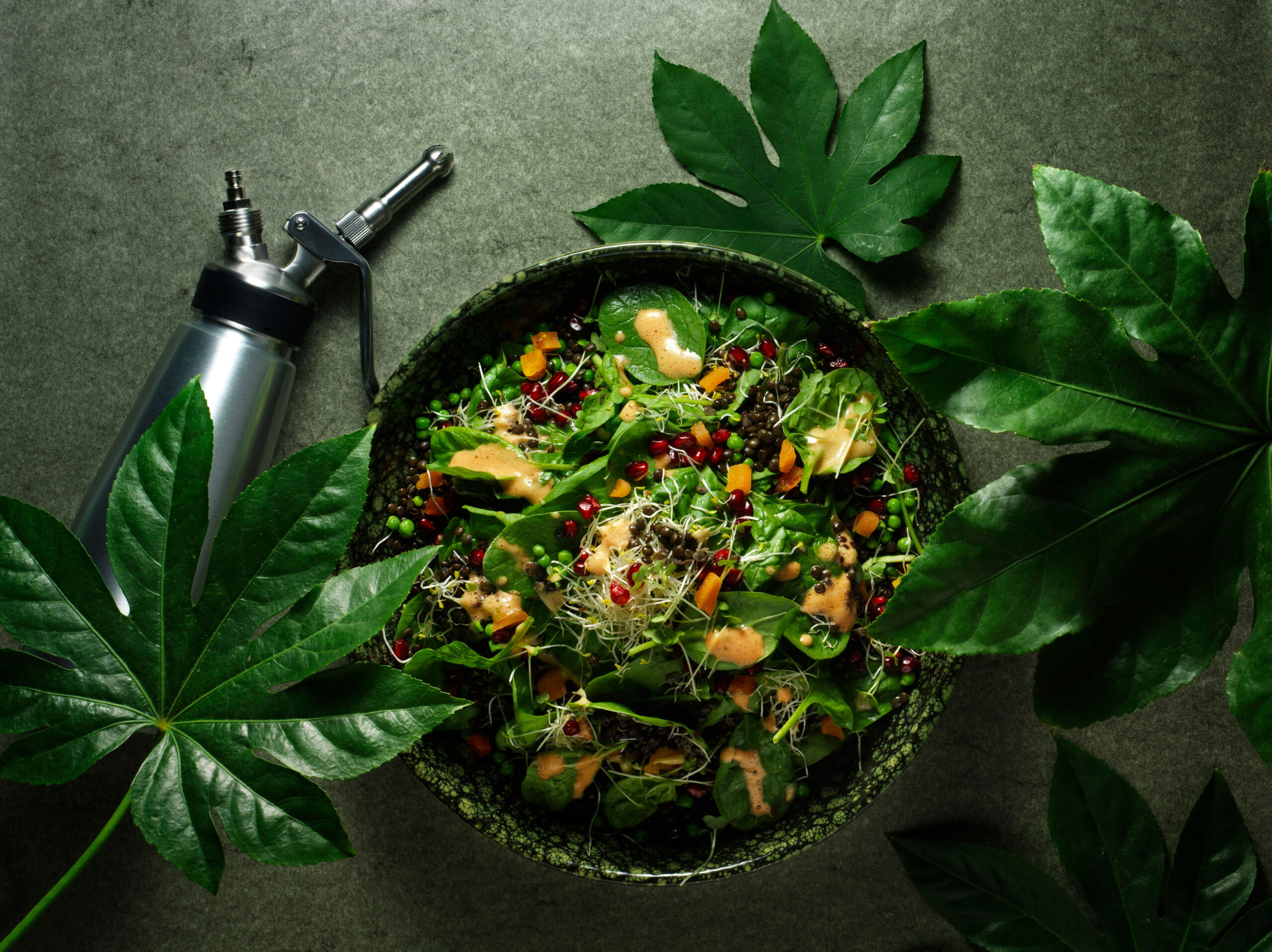 Creative food photo of SmartWhip recipe earth day salad made by STUDIO_M Amsterdam